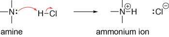Ammonium Formation