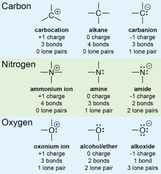 Carbon Nitrogen Oxygen Charges